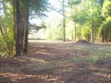 1258 Wooded Acres Road - Photo 8