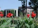 1140 Natal Drive - Photo 8