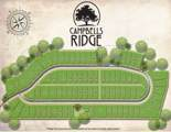6740 Campbells Ridge Drive - Photo 9