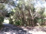 23 Horsemint Trail - Photo 1