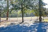 1606 Grandiflora Drive - Photo 4