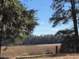 4524 Live Oak Drive - Photo 6