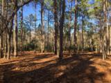 568 Vela Path - Photo 5