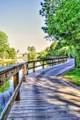 1062 Natural Springs Way - Photo 37