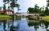 1062 Natural Springs Way - Photo 39