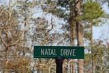 1162 Natal Drive - Photo 5