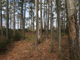 Lot 28 Pointe Harbor Drive - Photo 11