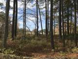 Lot 28 Pointe Harbor Drive - Photo 13