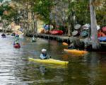 1308 Potomac Drive - Photo 8