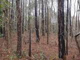 000 Harris Creek Road - Photo 2