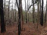000 Harris Creek Road - Photo 4