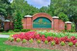 489 Broomsedge Court - Photo 4