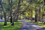 2993 Golf Lake Drive - Photo 44