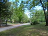212 Plantation Drive - Photo 4