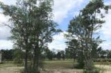 8796 Maple Ash Trail - Photo 1