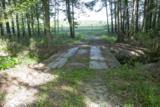 1240 Maple Swamp Road - Photo 28