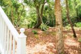 23 Sabal Palm Trail - Photo 36