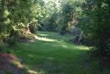 25 Osprey Watch Lane - Photo 18
