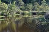 25 Osprey Watch Lane - Photo 5