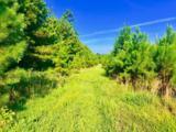 1499 Hardison Road - Photo 22