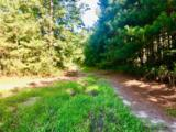 1499 Hardison Road - Photo 60