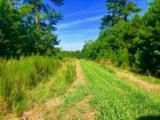 1499 Hardison Road - Photo 61