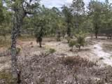 6740 Meeks Creek Drive - Photo 4