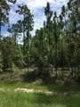 1520 Reidsville Road - Photo 35