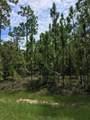 1520 Reidsville Road - Photo 36