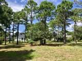 2934 Trailwood Drive - Photo 3