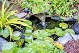 497 Broomsedge Court - Photo 35