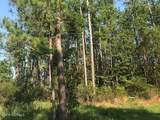 0 State Rd 1781 Drive - Photo 5