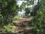 Tract 4 Pasture Point - Photo 8