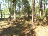 Lot 22-23 Morehead Road - Photo 6