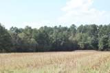 55 Acres Nc Highway 87 - Photo 3