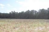 55 Acres Nc Highway 87 - Photo 4