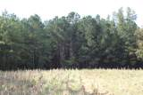 55 Acres Nc Highway 87 - Photo 6