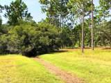 2765 Littleleaf Trail - Photo 6