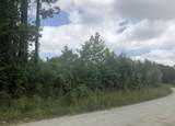 Lot 8 Blue Top Road - Photo 2