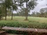 905 Plantation Drive - Photo 5