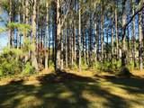384 Crow Creek Drive - Photo 5