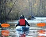 4842 Sequoyah Lake Cove - Photo 4