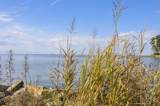 1625 Old Pamlico Beach Road - Photo 30