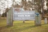 1431 Hammock Beach Road - Photo 58