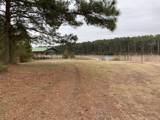 Lot 83 Pocosin Farms - Photo 5