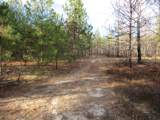 Lot # 0 Indian Reservation Road Road - Photo 6