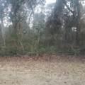 8905 Sound View Court - Photo 1
