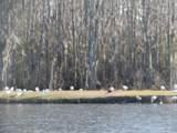 141 Lake Tabor Drive - Photo 10