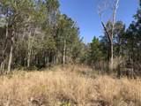 110 Blue Jay Way - Photo 2