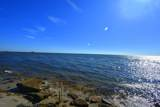 1328 Island Road - Photo 8